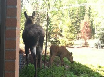 Special visitors to the AK Fisher House!